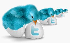 Накрутка подписчиков в Твиттере